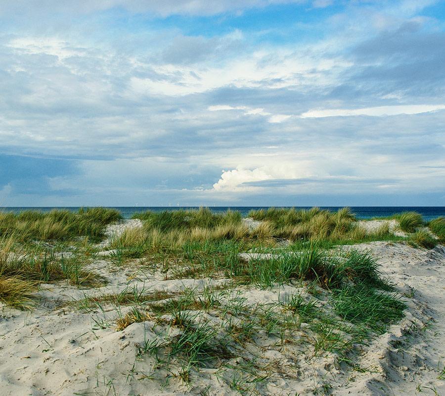 projekt-save-ozean-deutschland
