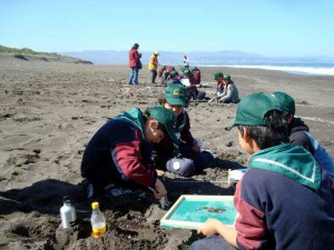 save-ocean-chile-gemany-plastic-waste-6