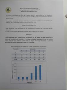 Basura encontrada según Transecto y Estaciones.