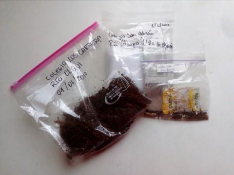 Chile: ¡Las primeras muestras de microbasura han llegado a la Universidad!